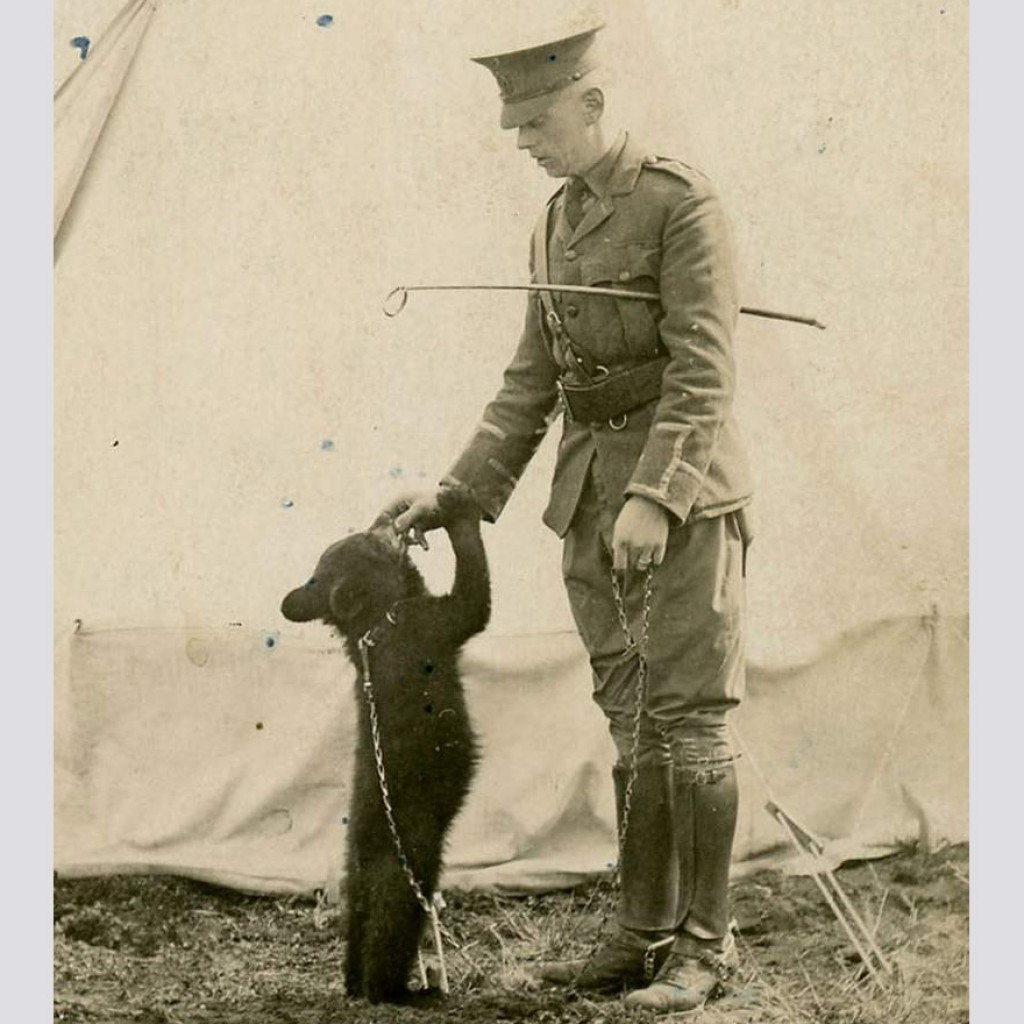 Winnie-1914