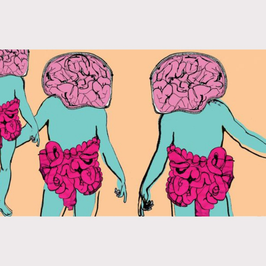 brainandguttoppic