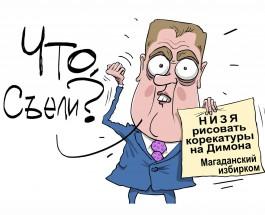 Магаданский избирком запретил карикатуры на Дмитрия Медведева