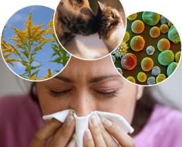 Татьяна Ансович: Как помочь себе при аллергии?