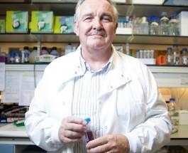 Ученые разрабатывают синтетический алкоголь, который не имеет негативных последствий