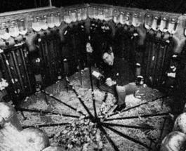 Эксперимент «Вселенная-25»: ученый создал рай для мышей и что из этого получилось