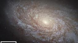 Украинские астрономы открыли уникальную галактику
