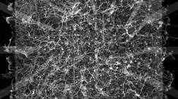 Ученые создали искусственный мозг из серебра и заставили его учиться
