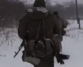 ВСУ не нарушили Минские соглашения, взяв под контроль Новоалександровку