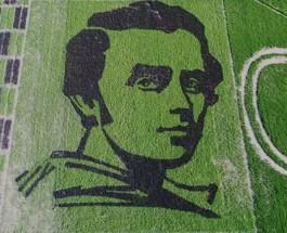 В Украине на рисовом поле создали гиганский портрет Тараса Шевченко