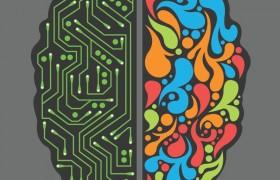 Зависит ли ум от размера мозга