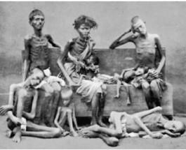 Три майдана помогли нам стереть страх Голодомора, который сидел «в костях»