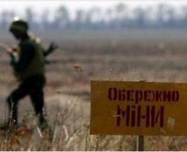 Во сколько Украине обойдется разминирование Донбасса