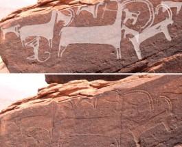 Обнаружены древнейшие доказательства охоты с собаками в неолите