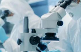 Cамая страшная болезнь: почему Франция приостановила изучение прионов?