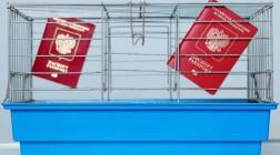Можно ли выжить в Крыму без российского паспорта?