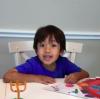 6-летний ребенок заработал 11 миллионов долларов на обзорах игрушек в YouTube