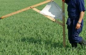 Как в Украине бесплатно получить землю