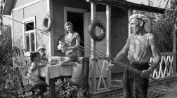 Феномен радянських дач: як містяни вирішили стати селянами