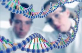 Ученые впервые в истории создали лабораторный геном, который может воспроизводить себя