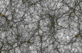 Ученые построили крупнейшую модель Вселенной