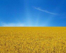 Украина своими глазами. Впечатления россиянина