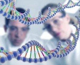 Ученые нашли, как «отключить» ген, ответственный за ожирение