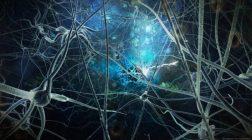 Ученые обнаружили два состояния человеческого сознания