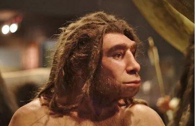 18 фактов о неандертальцах