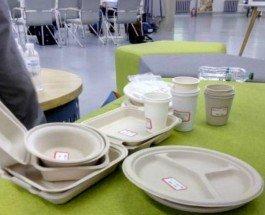 Украинцы создали экологическую одноразовую посуду