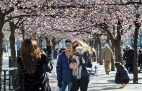 Почему Швеция отказалась от жестких ограничений во время пандемии?