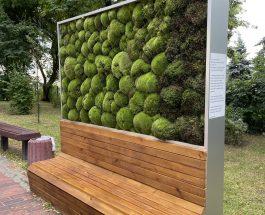 У центрі Києва з'явився новий moss-модуль, що здатний замінити 275 дерев